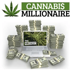 Cannabis Millionaire Cannabis Millionaire Legit è? Il verdetto!